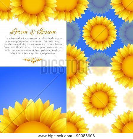 Sunflower backgrounds set