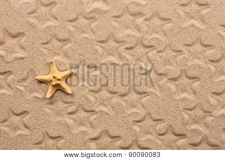 Starfish And Its Imprints On The Sand