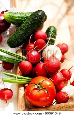 Fresh Vegetables - Tomatoes, Radishes, Green Onions, Cucumbers