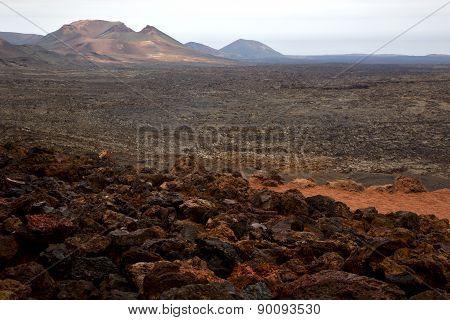 Bush Timanfaya  Volcanes Volcanic