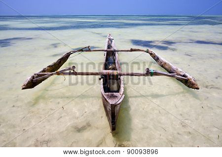 Relax  Of Zanzibar  Africa Coastline Boat Pirague In   Blue