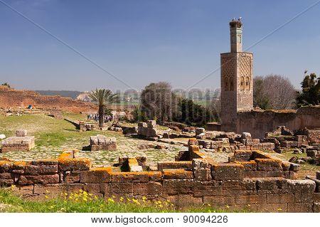 Chellah Ruins and Minaret, Rabat, Morocco