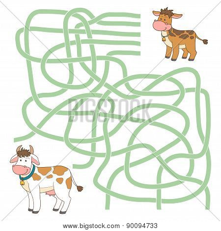 Maze Game (cow And Calf)