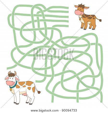 Maze Game (cow And Calf)
