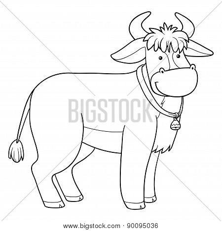 Coloring Book (bull)