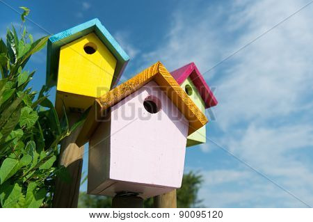 Colorful wooden birdhouses outdoor