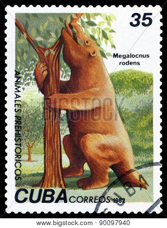 Vintage  Postage Stamp. Megalocnus Rodens.