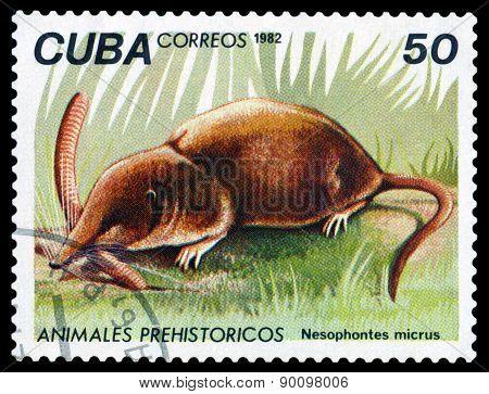 Vintage  Postage Stamp. Nesophontes Micrus.