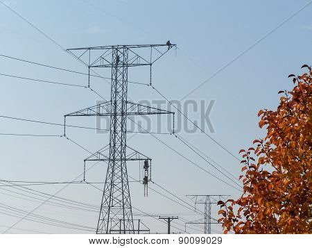Inspecting High Voltage Lines