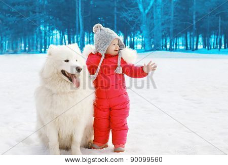 Child With White Samoyed Dog In Winter Day