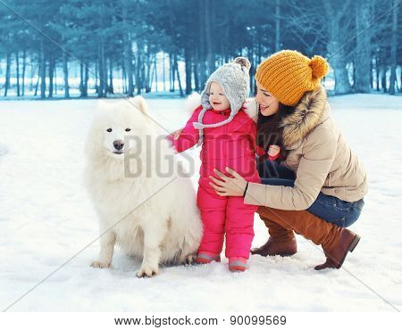 Happy Family In Winter Day, Mother And Child Walking With White Samoyed Dog In The Park