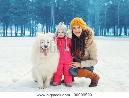 Portrait Of Happy Family In Winter Day, Mother And Child Walking With White Samoyed Dog In The Park