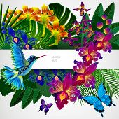 stock photo of tropical birds  - Floral design background - JPG