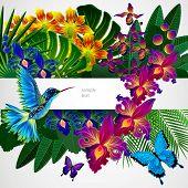 stock photo of colibri  - Floral design background - JPG