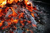 stock photo of ashes  - A small burning campfire littered with ash - JPG