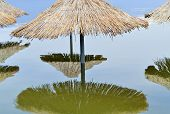 stock photo of flood  - Reed sunshades flooded after heavy rains connected with climate changes - JPG