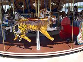 pic of merry-go-round  - Merry Go Round photo of the various animal seats - JPG