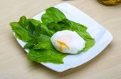 image of benediction  - Egg benedict with salasd leaves on the wood background - JPG