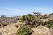 picture of plateau  - Plateau landscape of Witse - JPG