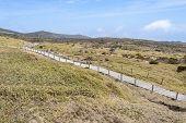 foto of plateau  - Landscape of plateau in Hallasan moutain view from Yeongsil trail in Hallasan mountain National Park in Jeju Island Korea - JPG