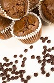 picture of chocolate muffin  - Freshly baked homemade chocolate muffins on white - JPG