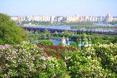 picture of kiev  - lilacs blooming in kiev - JPG
