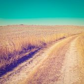 stock photo of dirt road  - Dirt Road Leading to the Farmhouse in Tuscany Retro Effect - JPG