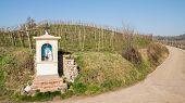 stock photo of mary  - Italian traditional votive temple in the countryside dedicated to the Virgin Mary to propitiate the harvest - JPG