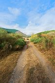 pic of dirt road  - Dirt Road in the Cantabrian Mountains Spain - JPG