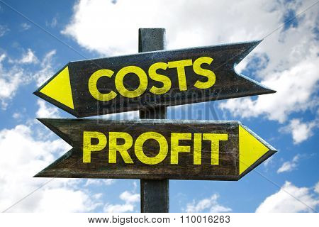 Costs - Profit signpost with sky background