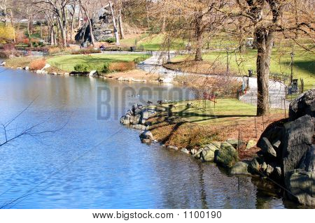 Lake Edge In Public Park