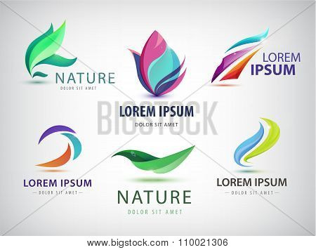 Vector set of abstract wavy, spa, salon, nature logos, icons isolated