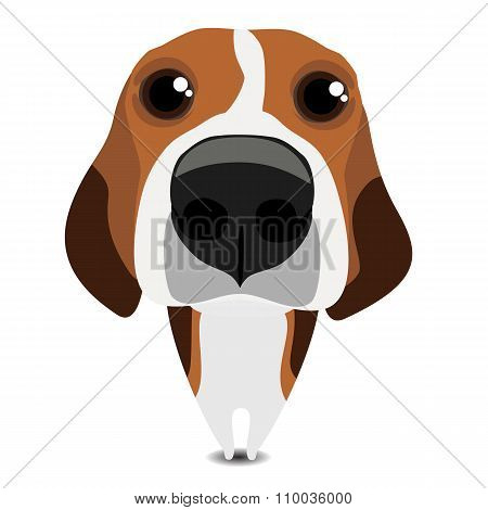 Isolated funny sad beagle on white background