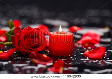 Beautiful rose petals with candle and therapy stones ,