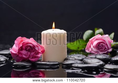 pink rose, petals with candle and therapy stones