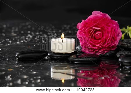 Lying down red ranunculus with white candle and therapy stones