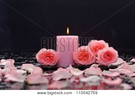 Set of pink rose with candle on wet background