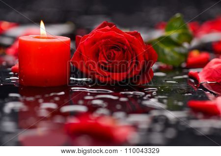 Valentines Day background- red rose with red candle on wet