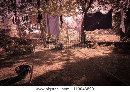 Washing Line, Vintage Edit