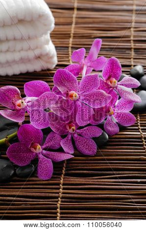Lying on pink branch orchid with stones on bamboo mat