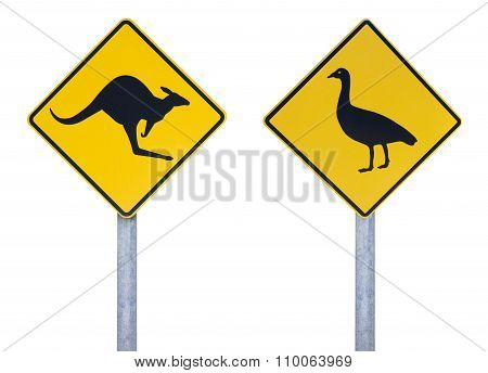 Cape Barren goose and kangaroo road signs