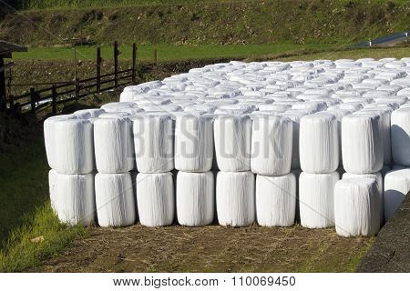 Wrapped Bale Silages