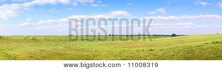 Yellow Field Of Haystacks Under Blue Sky.