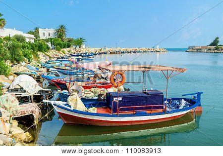 The Fishing In Tunisia
