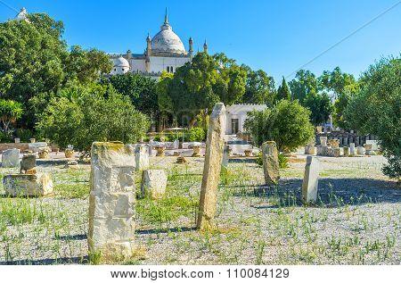 Visiting Ancient Carthage