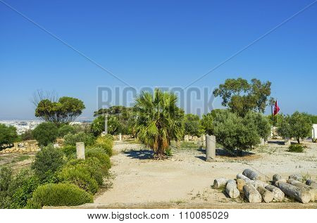 Visiting The Ruins Of Carthage
