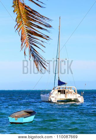 White catamaran and blue boat on Indian Ocean near Ile Aux Cerfs Island ( Mauritius Island). Blue sea and beach with palm tree in tropical paradise.