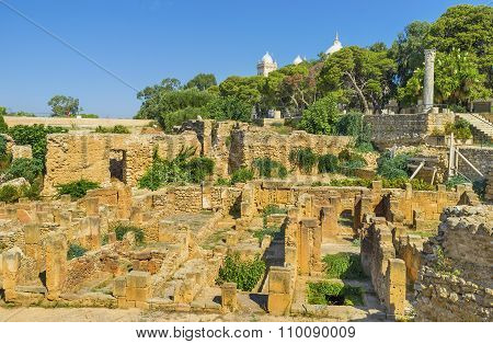 The Red Stones Of Carthage