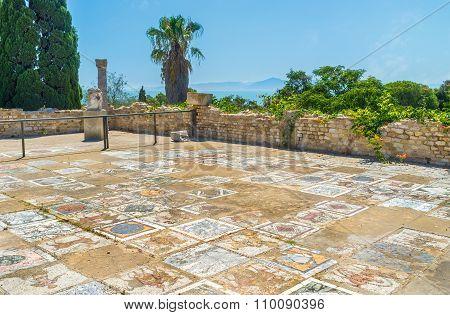 The Mosaics Of Carthage