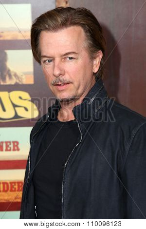 LOS ANGELES - NOV 30:  David Spade at the